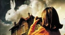 amelie poulain nuage